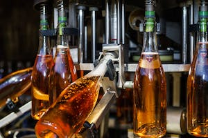Photo of champagne bottles being filled on a champagne bottle filling machine