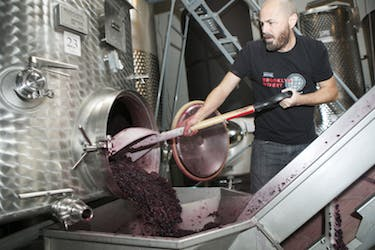 Photo of Conor McCormack, Head Winemaker at Brooklyn Winery, digging out a tank of Merlot. Photo courtesy of Clay Williams.
