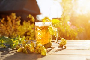 Photo of a glass of beer on a picnic table in the sun