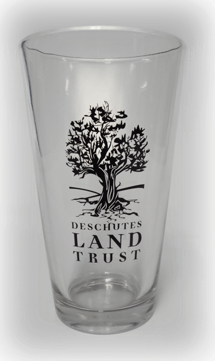 16oz Standard Pint Glass Beer glass sold by Cascade Graphics