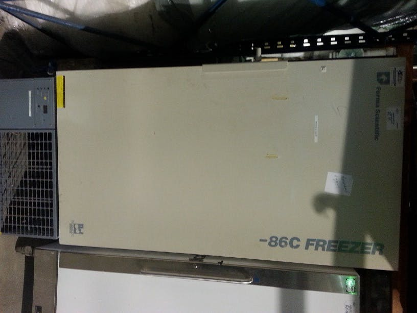 FORMA SCIENTIFIC 916-86C Laboratory Freezer -86 Commercial freezer sold by Aevos Equipment