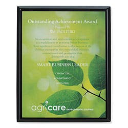 "Black Plaque - 8"" x 10"" by Jaffa® Award sold by Distrimatics, USA"