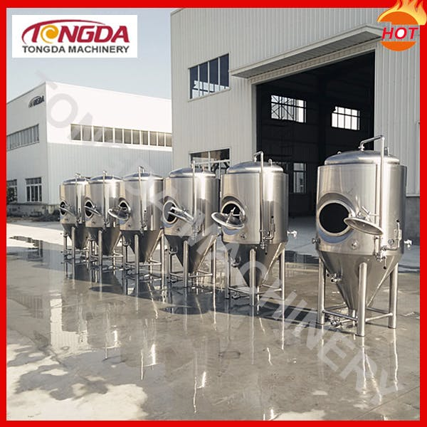 5BBL Fermentation Tank Fermenter sold by TD Machinery Co., Ltd.