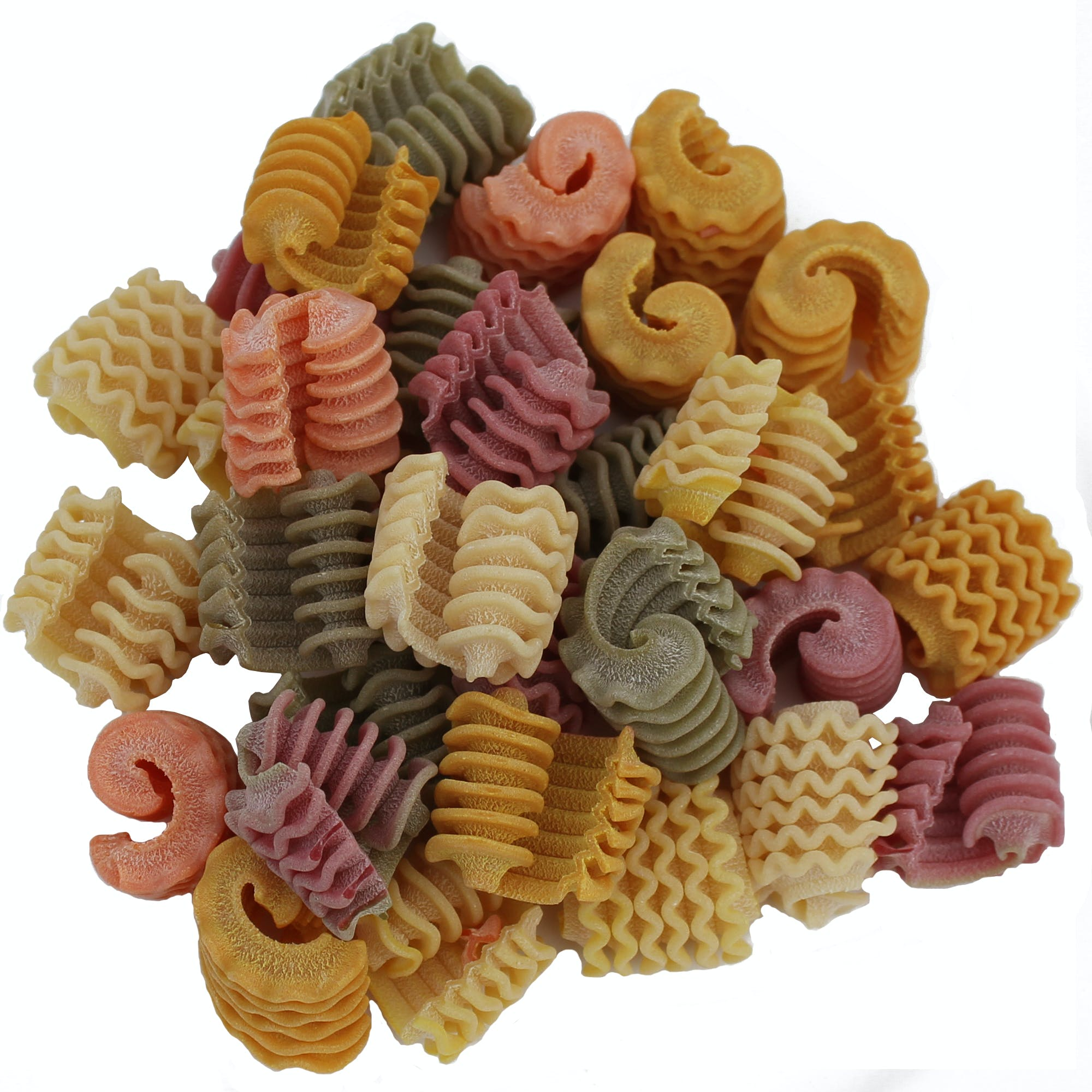 "Morels ""Spugnole"" Colored Pasta Pasta sold by M5 Corporation"
