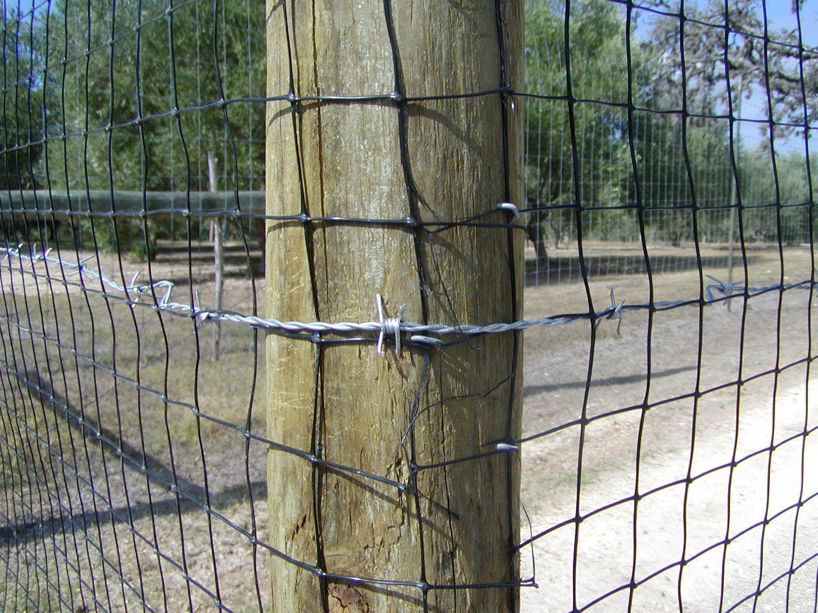 Black plastic deer or livestock fencing Fencing sold by Producer Supply Co.