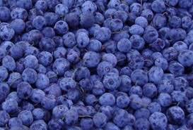 Blueberries, IQF Frozen fruit sold by Schare & Associates, Inc.