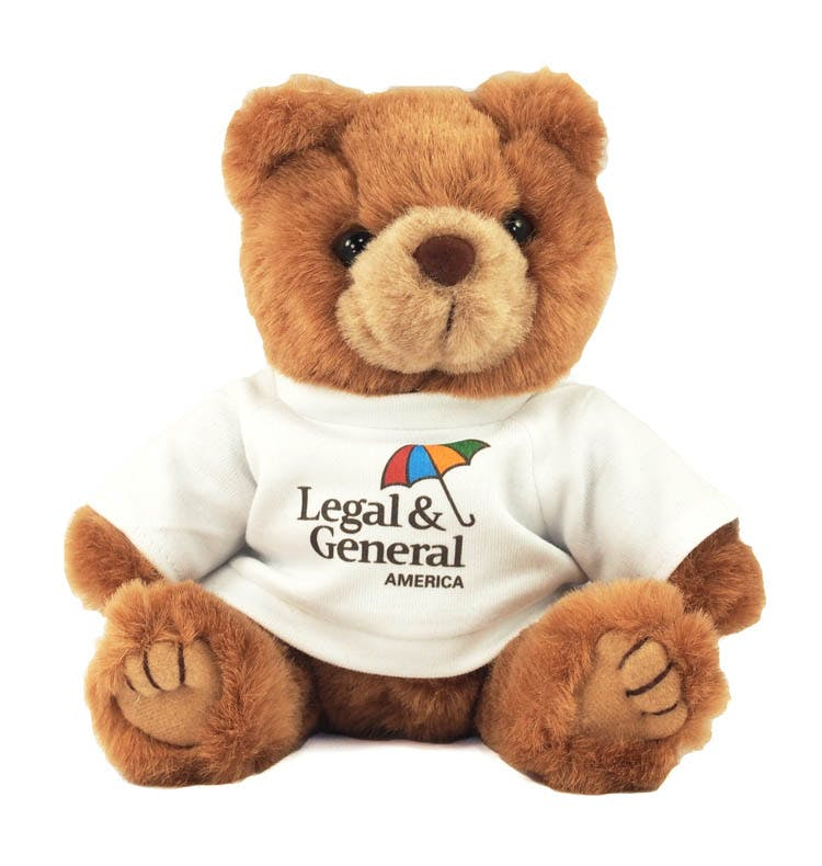 Brown Bear with T-Shirt (Item # SGEHS-IQIZP) Stuffed toy sold by InkEasy