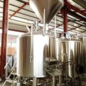 2 vessel Brewhouse with Grist