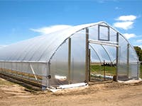 Greenhouse: gothic greenhouse