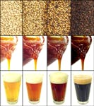 Malt concentrate