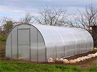 Greenhouse: quonset greenhouse