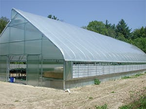 Greenhouse: free standing greenhouse